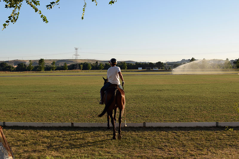 madrid-polo-lesson-5