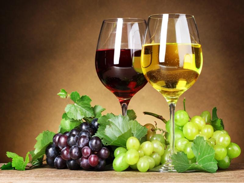 el-arte-de-la-degustacion-de-los-vinos-el-portal-del-chacinado_l6r5o2